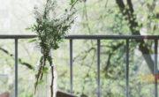 Casa ecologica con aislamiento natural