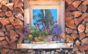 Casa ecológica Vitoria-Gasteiz